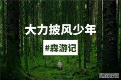 大力智能开启森林研学之旅,探索披风少年的成长密码